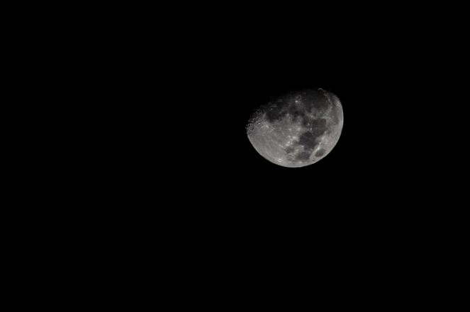 5473-black-and-white-night-dark-moon